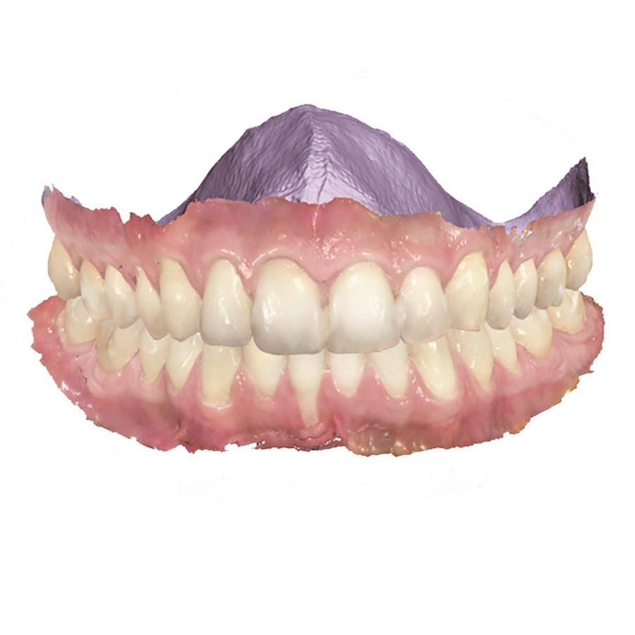 orhodontic planner